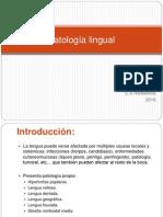 Patologia Lingual