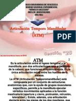 Articulacin Temporo Mandibular (ATM).ppt