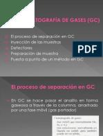Clase 12. Cromatografia de Gases