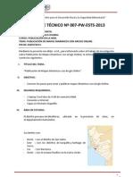 Informe Técnico 07 - PW Vega Panta