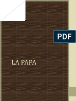 Monografia Final de Lenguaje La Papa
