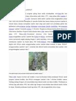Spesifikasi Citra Landsat
