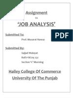 Jab Analysis Sajjad