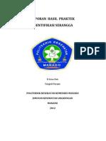 HASIL PRAKTEK ENTOMOLOGI PAKET I.docx