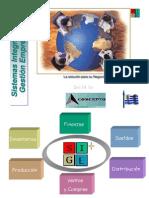 Sistemas Integrales Gestion Empresarial