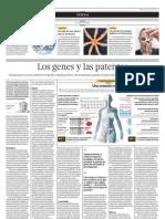 Los Genes y las patentes