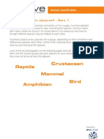 11-14yrs - Darwin - Activity - Animal Classification - Handout
