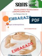 Embarazo -QB1Salomón- Equipo 3