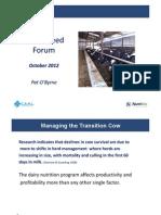 Transition Cow Feeding
