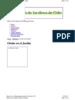 otoño1.pdf
