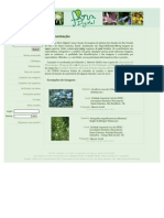 Flora Digital UFRS