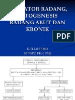 Patogenesis Radang Akut Dan Kronik