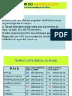 A FORÇA DO AGRONEGÓCIO BRASILEIRO Roni