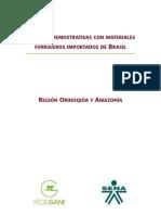 Orinoquia y Amazonia Baja Sincub