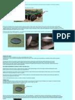 Cocina al disco de arado.pdf
