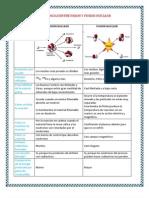 DIFERENCIAS ENTRE FISION Y FUSION NUCLEAR tarea.docx