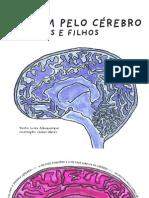 Viagem Pelo Cerebro