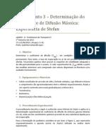 Stefan.pdf