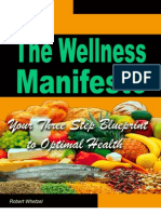 Wellness Manifesto