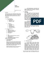 Kista Ovarium Catatan Shalini