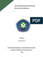 Laporan Praktek Entomologi PENGAWETAN SERANGGA paket II.pdf