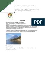 Instituciones que velan por la conservación del medio ambienteFF