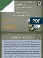 DIAPOSITIVAS LEGISLACION.pptx