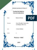 PRÁCTICA DE LABORATORIO - PSA