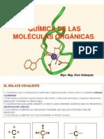 BIOMOLÉCULAS Y PROTEÍNAS.pdf