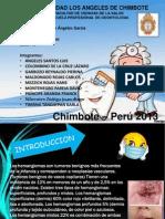 Diapositivas de Hemangiomas Corrig.....