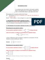 Clases de Determinantes 2013-i