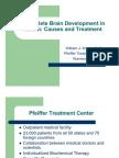 Incomplete Brain Development in Autism