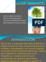 EDUCACION  AMBIENTAL diapositivas