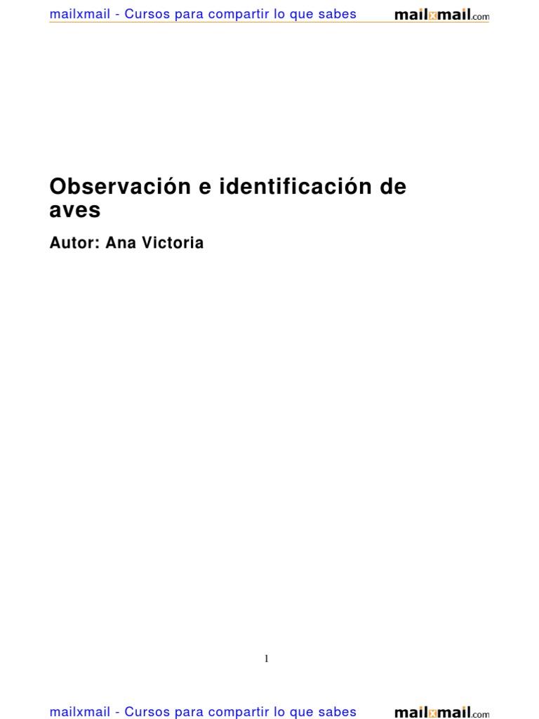 observacion identificacion aves 5472 completo