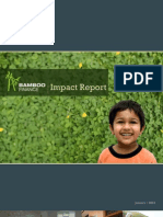 Bamboo Finance - Impact Report 2013