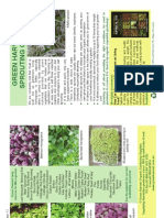 Sprouting booklet.pdf