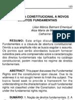Abertura Constitucional Novos Direitos