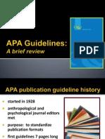 APA Style Manual Net