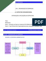 Aula Organização de Empresas - EstruturaOrganizacional