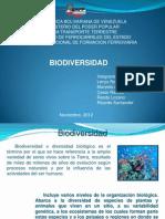 Bio Divers i Dad