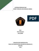 LP CKD Dengan Anemia