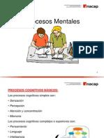 132830997-Procesos-mentales