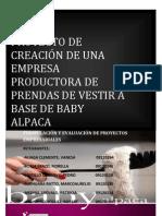 Producto 3 Final Baby Alpca +
