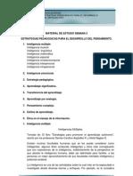 Unidad 2-Estrategias Pedagogicas Para El Desarrollo Del Pensamiento