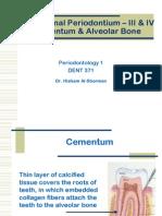 The Normal Periodontium Cementum Alveolar Bone