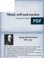 Self, Mind and Society