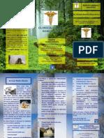 Brochure Rhodes 1
