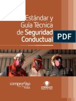 Estandares Seguridad Conductual 1