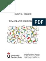 Ensayo-Opinion Democracia Deliberativa