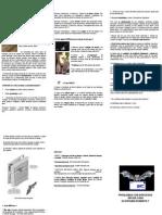 Folder Morcegos 1
